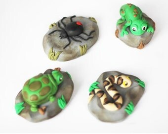 Fondant reptile cake toppers. Fondant spider. Fondant turtle. Fondant snake. Fondant insect. Fondant bug. Fondat reptile. Reptile Cake.