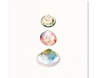 Sea Shells Watercolor Print.
