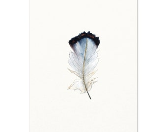 Black and White Feather Art Print.