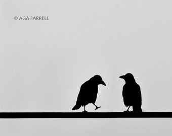 Bird Photography, Black and White Print, Crow Art, Nature Print, Bird Wall Art, Grey Print, Black and White Art