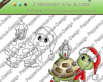 Digi stamp set - turtle with Lantern / E0086