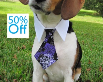 On Sale! Dog/Cat purple spiderweb necktie/bowtie on a shirt style collar