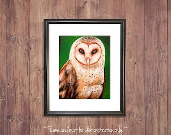 Barn Owl Print from Original Oil Painting, 4x5, 8x10