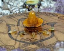 MOVING SALE - Citrine Cactus Quartz Cluster - Africa - Wealth & Higher Self Stone