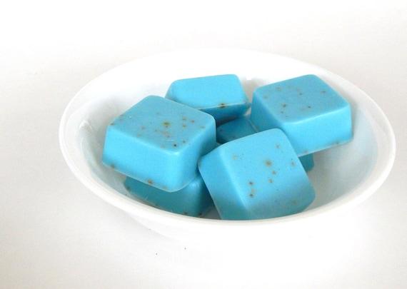 Ocean Mist Small Hand Soaps Aqua Blue Mini Soaps Small Soap