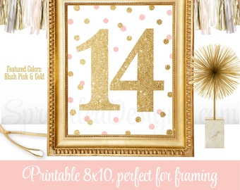 14th Birthday Party - Fourteenth Birthday - Number Fourteen 14 Sign - Blush Pink Gold Glitter - Printable Girl Birthday Party Decorations