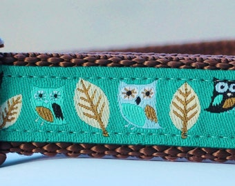 Owl Dog Collar in Teal Green/Collar/Adjustable/Hootie/Woodland