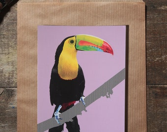 The toucan postcard illustration