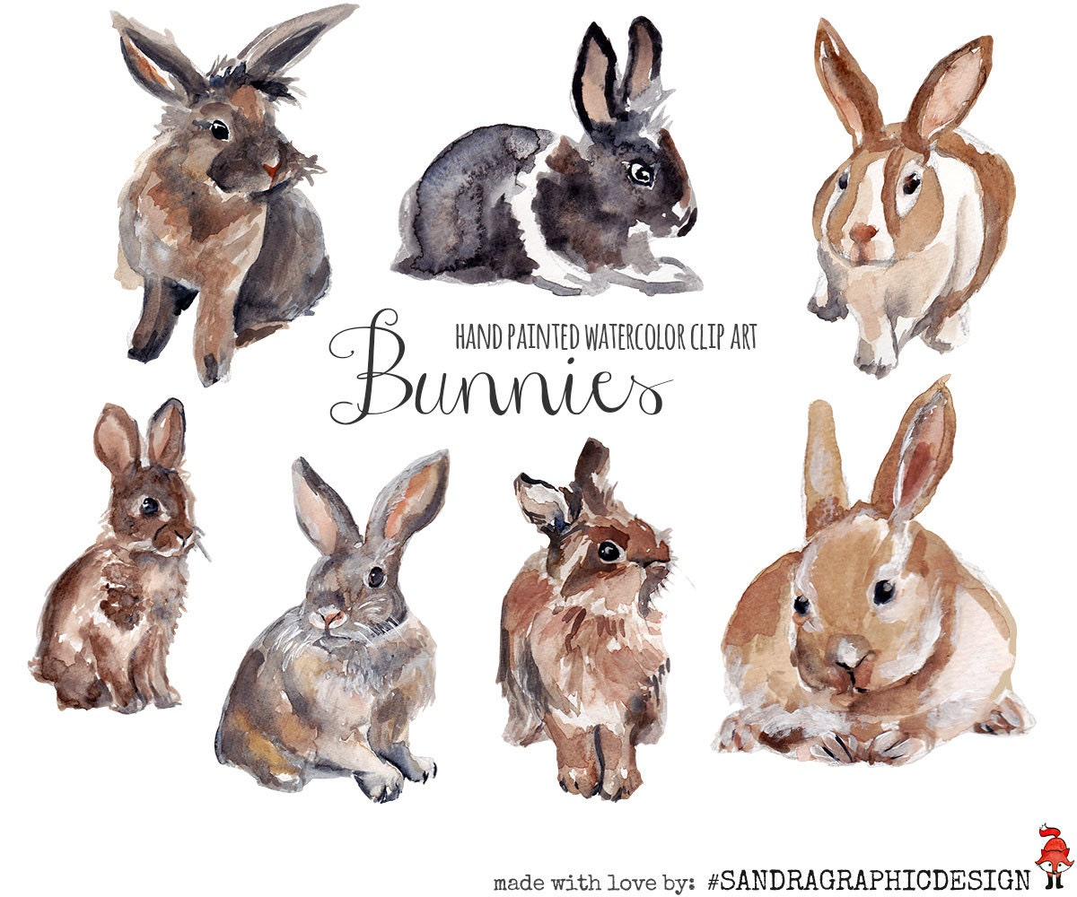 Bunnies clip art watercolor bunnies painted by hand rabbits