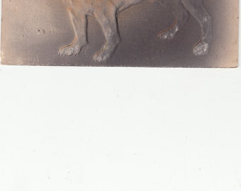 1908 PM Air Brushed Antique Postcard Male Bulldog Two Color, Terrific! Richly Embossed