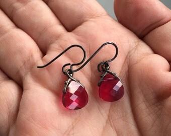 Pink Earrings, Magenta Earrings, Briolette Earrings, Niobium Earrings, Dark Pink Earrings, Hypo Allergenic Earrings, Small Dangle Earrings