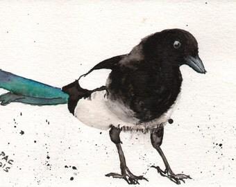 Original Watercolour & Ink Painting - 'Magpie'