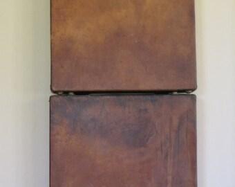 Vintage Leather Shoe Salesman Case/ Leather Cases/ Industrial/Display Piece