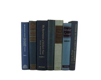Blue  Old Books, Decorative Books , Decorative Book Set , Photo Props ,  Wedding Book Decor , Book Lover Set