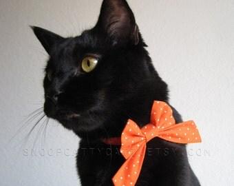 Cat Bow - Pumpkin Spice - Cat Accessory