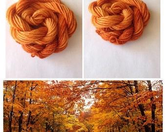 Fall Day - mini skein - 25 yards