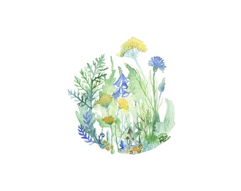 Blue & Yellow Wildflowers-Watercolor Painting Print-Nature Art