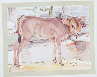 Calf  Illustration by ED