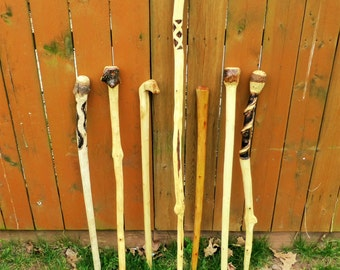 Custom Hand Carved Walking Stick and Hiking Stick