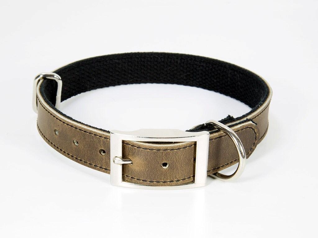 Heavy Duty Personalized Dog Collar