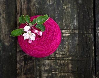 Digital Download photography Apple blossom