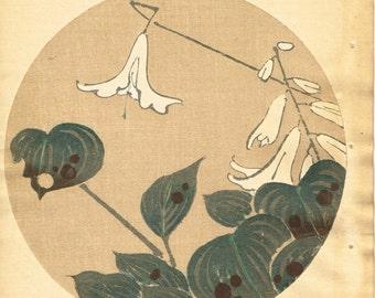 """Japanese antique woodblock print, Ito Jakuchu, """"Hosta, from Jakuchu gafu"""""""