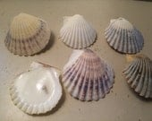 108 Scallop Shell Candles  Seashell Tealight Candles Scent Made from Cape Cod Bay Scallop Shells Harbor 100% Soy Choose Your Scent