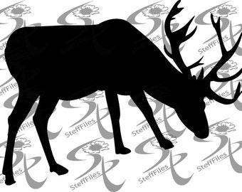 Vector DEER, Animals, Digital image, graphical,SVG,DXF,eps,ai,png,jpg