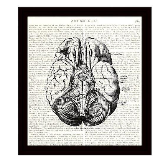 brain dictionary art print 8 x 10 human brain diagram. Black Bedroom Furniture Sets. Home Design Ideas