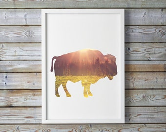 Sunrise, sunset, Buffalo, Bison, mountain, A4 8.5x11 inches, wild Buffalo, Rustic Decor, Rustic Print, Rustic, Rustic Print, Bison Printable