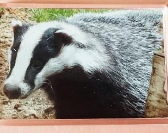 Badger - Jumbo Acrylic Fridge Magnet
