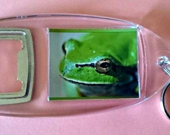 Green Frog - Bottle Opener Keyring/ Keychain