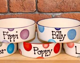 Large Hand painted personalised ceramic dog puppy spotty bowl dish feeder