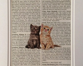 Kittens Book Print -  Recycled Vintage Dictionary Page, Home Decor, Poster, Art, Animal Lover
