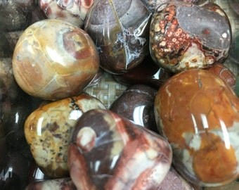 Rhyolite Tumbled Rainforest Jasper