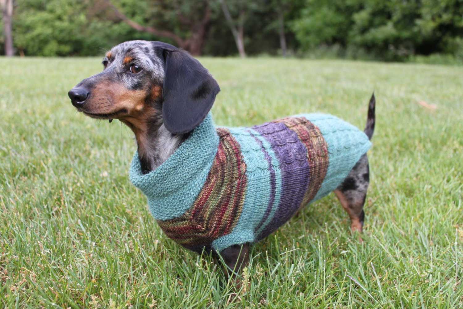 Knitting Pattern Scrap Yarn Cowl Neck Mini Dachshund Dog