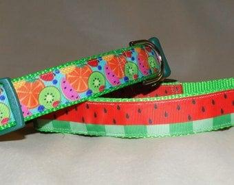 Fruit Dog Collar Watermelon Dog Collar Kiwi Dog Collar Blueberry Dog Collar Orange Dog Collar