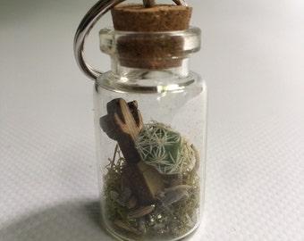 Glass bottle terrarium cactus keychain.