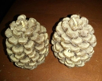 Vintage Pine Cone Candles / Set of 2 / Harvest / Thanksgiving / Fall / Autumn / Table Centerpiece / Holiday Decor / Cabin Decor / CIJ