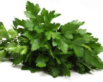 Organic Kosher Cilantro Leaf