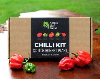 Scotch Bonnet Chilli Growing Kit - just add water and sunlight!