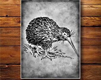 Kiwi Illustration, Bird Print, Vintage poster, Fauna Art BW527