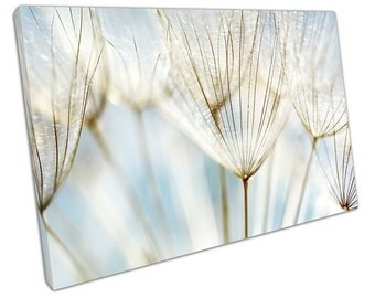 Blue Abstract Dandelion FLOWER Canvas WALL ART C2532