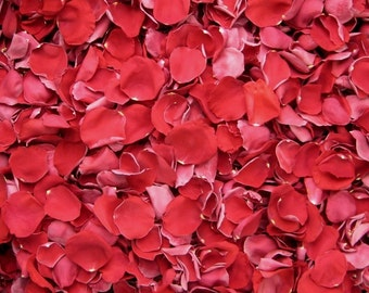 Freeze Dried Rose Petals, Red, 10 cups of REAL rose petals, perfectly preserved