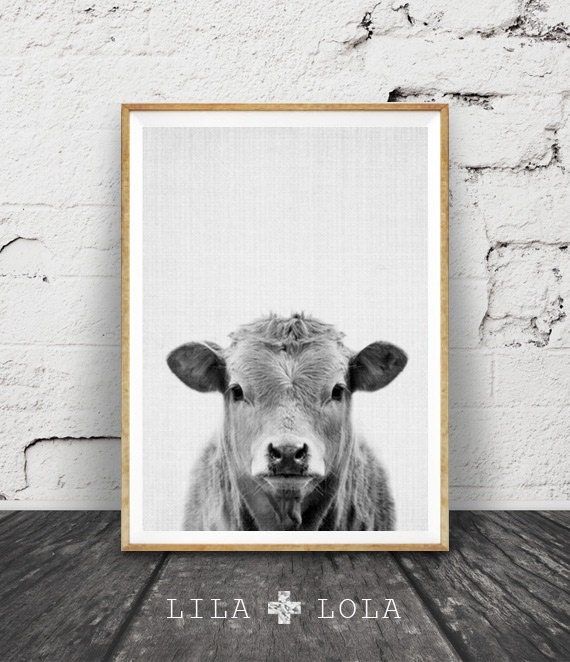Black Cow Wall Decor : Cow print farm animal wall art black and white by