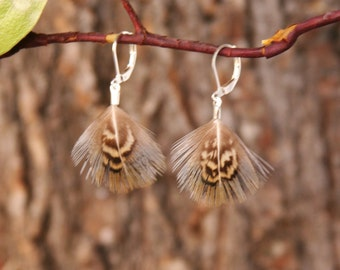 Pheasant Feather Earrings / Iridescent Aqua, Blue & Cateye