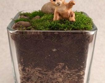 """Live Moss Terrarium with """"Hagen-Renaker"""" Baby Leopard Figurine"""