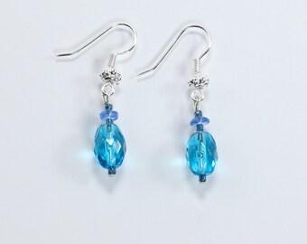 Sky Blue & Indigo Earrings