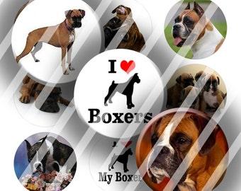 Digital Bottle Cap Collage Sheet - Boxer Puppy Dogs - 1 Inch Circles Digital Images for Bottlecaps