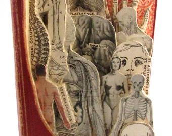 Old Medicial book, book sculpture.  Altered Books. Book Art, goth, curio, unique hand cut book sculpture